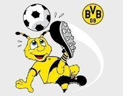 Pin Von Walter Auf Bvb Bvb Bvb Bilder Bvb Dortmund