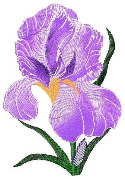 Iris Small Free Embroidery Flowers Free Machine Embroidery Designs Machine Sewing Embroidery Designs Embroidery Flowers Pattern Machine Embroidery Designs