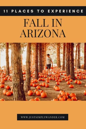 11 Places To Experience Fall In Arizona Simply Wander In 2020 Arizona Travel Arizona Falls Arizona