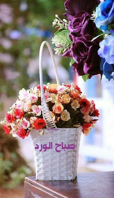 صباحية الورد والفل والياسمين صباحك ورد الورد والياسمين مكتوب عليها صباح الخير صباح الورد In 2021 Beautiful Morning Messages Good Morning Roses Evening Greetings