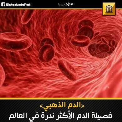 فصيلة الدم الأكثر ندرة في العالم الدم الذهبي لفصائل الدم نظام معقد لللغاية فأجسامنا مليئة بخلايا الدم الحم Human Body Facts General Knowledge Facts Human Body