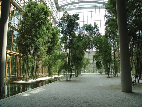 A series of large atriums create an indoor heaven at the Lufthansa - häcker küchen frankfurt