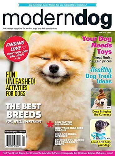 Modern Dog Https Magazines Boutiquecloset Com Product Modern Dog Live Your Best Dog Inclusive Life With Moder Modern Dog Modern Dog Magazine Dog Magazine