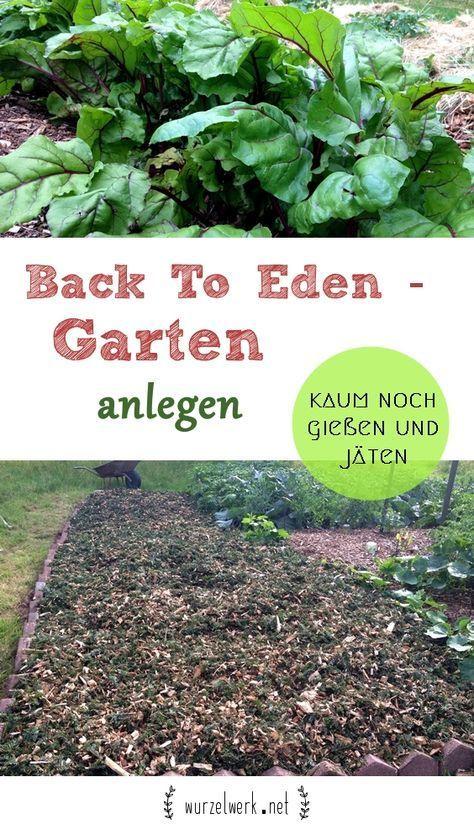 Eigenen Garten Schnell Und Einfach Anlegen Die Back To Eden Methode Ist Super P Anlegen Die Edenmethode Eigen Permaculture Little Garden Horticulture