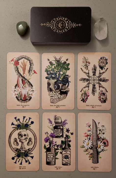 New Deck: Antique Anatomy Tarot – Ephemera Edition – Tarot Whimsy