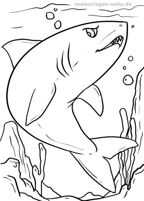 malvorlage hai  malvorlagen ausmalbilder und ausmalen