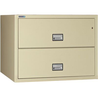 Phoenix Safe International 2 Drawer Lateral Filing Cabinet Finish Putty Filing Cabinet Drawers Mobile File Cabinet