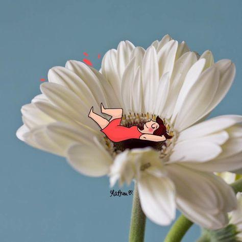 """Bonne semaine ❤aux Marguerites , Ou ,aux Pâquettes ou aux fleurs ... Et avis aux """"z'amoureux transis"""" la place est prise !! ...choisissez- en une autre !! ...pour l'effeuillage,  car elle ne doit pas être déstabilisée durant sa sieste...."""