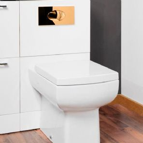 Concealed Dual Flush Toilet Cistern 6l With 24ct Gold Plated Dorato Button Toilet Cistern Dual Flush Toilet Back To Wall Toilets