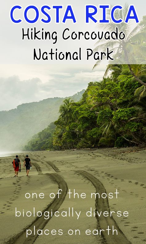 Hiking Corcovado National Park? Here's what you need to know about hiking the San Pedrillo and Sirena stations: http://mytanfeet.com/activities/san-pedrillo-sirena-station-corcovado-national-park/