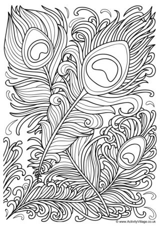 Colouring Pages For Older Kids And Adults Peacock Coloring Pages