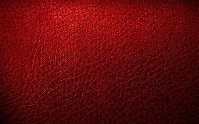 تحميل خلفيات جلد أحمر خلفية 4k أنماط الجلود جلدية القوام الأحمر جلدية الملمس خلفيات حمراء جلد الخلفيات ماكرو الجلود Besthqwallpapers Com