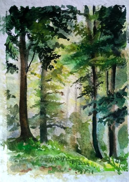 Green Forest Watercolor Landscape Paintings Forest Painting