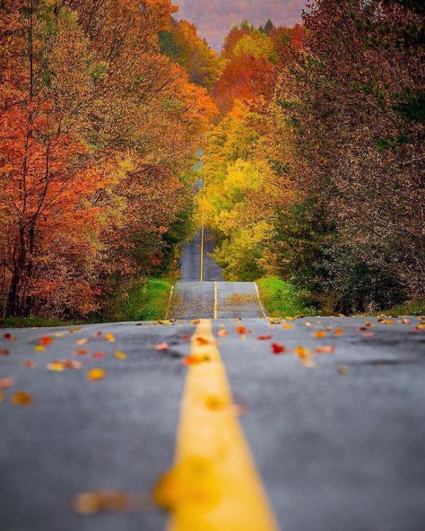 See This Instagram Photo By Exploringglobe 318 Likes Fall