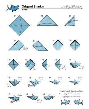 Fold Your Own Origami Shark At Home Origami Papier