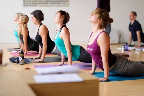 The World's 20 Best 200 Hour Yoga Teacher Training Programs