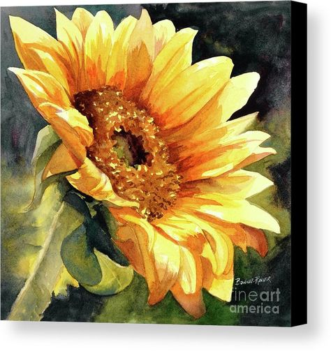 Looking To The Sun Canvas Print by Bonnie Rinier. All canvas prints are professionally printed, assembled, and shipped within 3 - 4 business days and delivered ready-to-hang on your wall. Choose from multiple print sizes, border colors, and canvas materials.