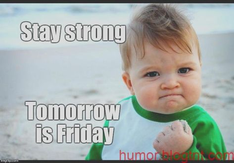 Morgen ist Freitag Donnerstag Wochenende   Aktuellste   Bilder  thursday humor  Gedanken  My sister, a phlebotomist on the Denver VA hospital, entered a patient's room to draw blood. Noti #Aktuellste #Bilder #Donnerstag #Freitag #Gedanken #humor #ist #morgen #thursday #wochenende