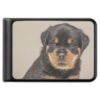 Rottweiler Puppy Portrait Power Bank Zazzle Com Rottweiler
