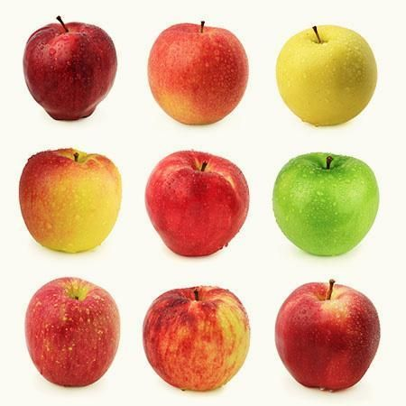 4 In 1 Apple Surprise Tree With Images Growing Apple Trees Apple Tree Fast Growing Trees