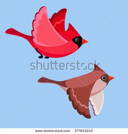 Vector Illustration Of Cartoon Flying Cardinals Vector