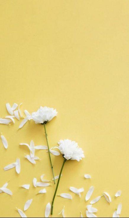 Best Flowers Tumblr Background Pastel Ideas Flower Phone Wallpaper Flower Background Wallpaper Cellphone Wallpaper