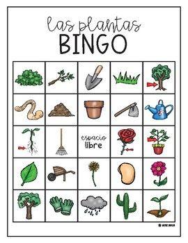 Bingo De Las Plantas Plant Bingo In Spanish Con Imagenes