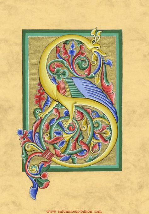 Lettrine S Zoomorphe Romane Alfabet Sredniowieczny Kaligrafia