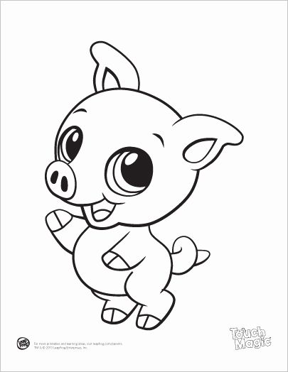 Baby Animals Coloring Sheets Best Of Baby Animal Coloring Pages Bestofcoloring In 2020 Baby Animal Drawings Cute Coloring Pages Zoo Animal Coloring Pages