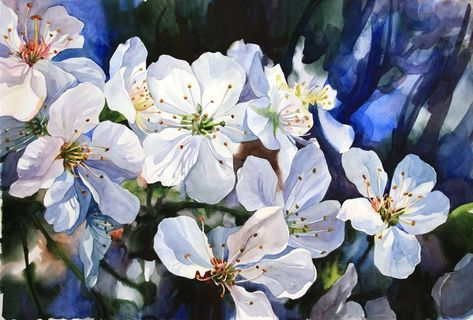 Original Art Watercolor Painting, measuring: 67W x 46H x 0D cm, by: Violetta Dudnikova (Russia). Styles: Realism, Fine Art, Modern, Impressionism. Subject: Floral. Keywords: Flowers, Springflowers, Watercolorpainting, Lightblue, Watercolor, Petals, Whiteflowers, Watercolorflowers, Spring, Blue, Paper, Painting. This Watercolor Painting is one of a kind and once sold will no longer be available to purchase. Buy art at Saatchi Art.