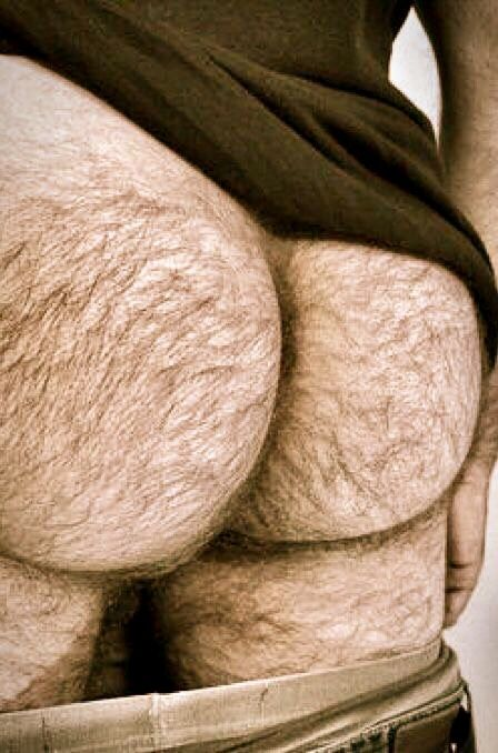 Men with big hairy assholes