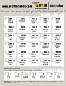 Insanity Asylum Volume 1 Calendar : insanity, asylum, volume, calendar, Asylum, Ideas, Shaun, Asylum,, Workout
