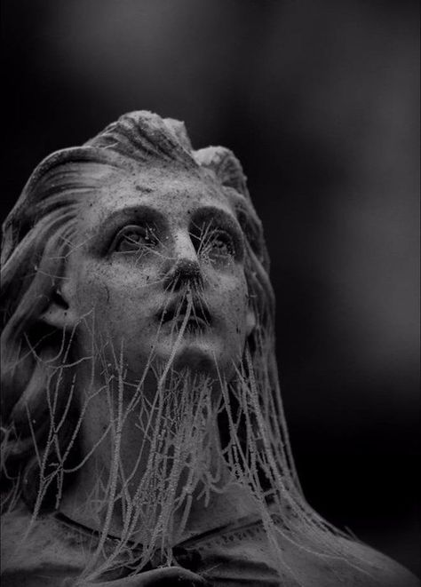 old girl angel Statue bust cobweb web look sad sadness mood dram drama fantasia dark blackandwhite black white black_whit black_and_white blackgirlmagic blackpink pic blackpicture 🖤 Art Noir, Cemetery Art, Cemetery Statues, Angel Statues, Buddha Statues, Stone Statues, Slytherin Aesthetic, Art Sculpture, Angel Sculpture