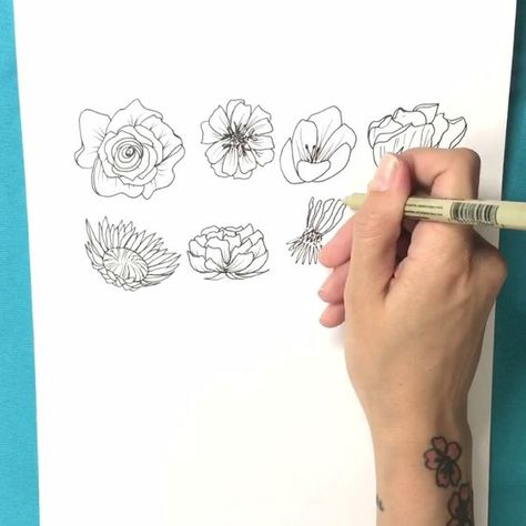 Watch this video to learn more about Brit + Co's online class Intro to Floral Illustration.