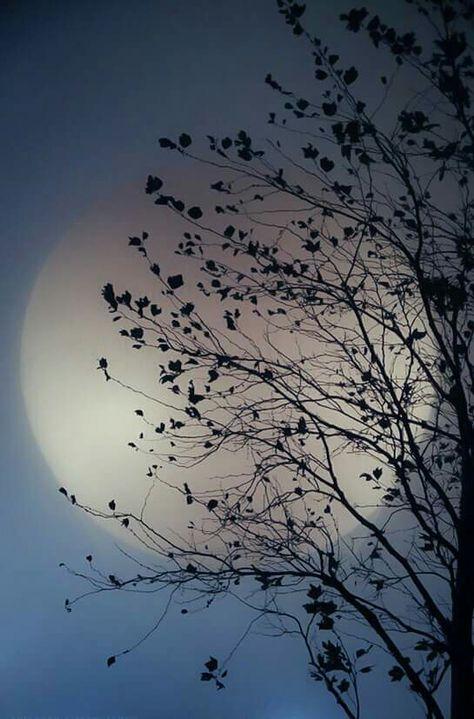 Bringing Up the Moon.... www.BlytheAyne.com #moon #Poetry #PinterestPoet