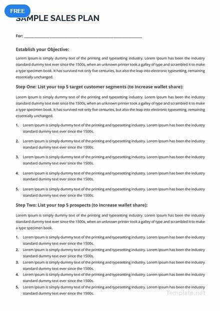 Free Sample Sales Plan How To Plan Templates Sample Sale