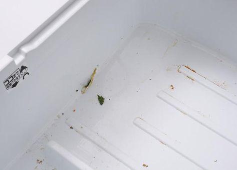 茶シミだらけの野菜室がこんなにまっ白になるなんて その理由がこちら