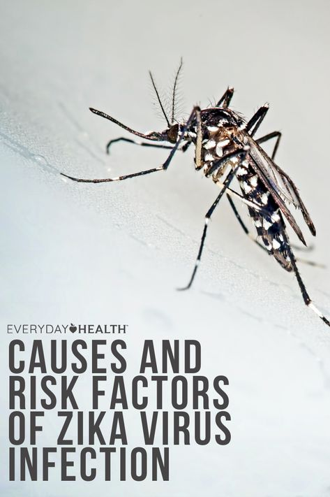 Outbreaks of Zika have been documented in the Americas, Africa, Asia, and the Pacific Islands. The first outbreak in the Americas occurred in 2015, when the virus spread through Latin and Central America.
