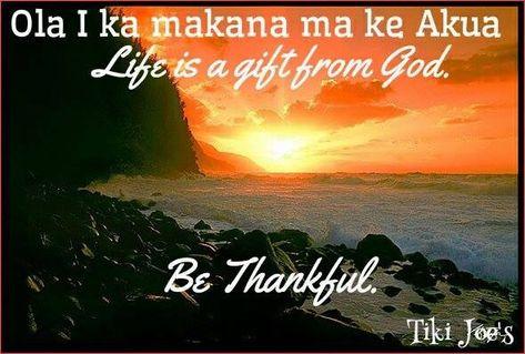 Hawaiian proverb                                                       …