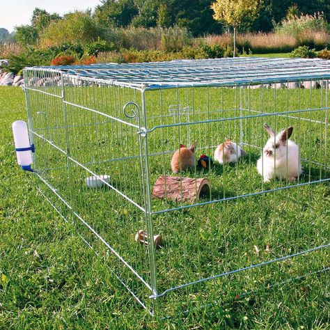 The TRIXIE Natura Freestanding Outdoor Run with Cover Enclosure prevents your small pets from getting loose and protects them from unwanted visitors. Use alone or as an add-on to TRIXIE Small Animal Home. Bunny Cages, Rabbit Cages, Outdoor Rabbit Hutch, Outdoor Rabbit Run, Best Egg Laying Chickens, Small Animal Cage, Rabbit Hutches, Pet Cage, Pet Rabbit