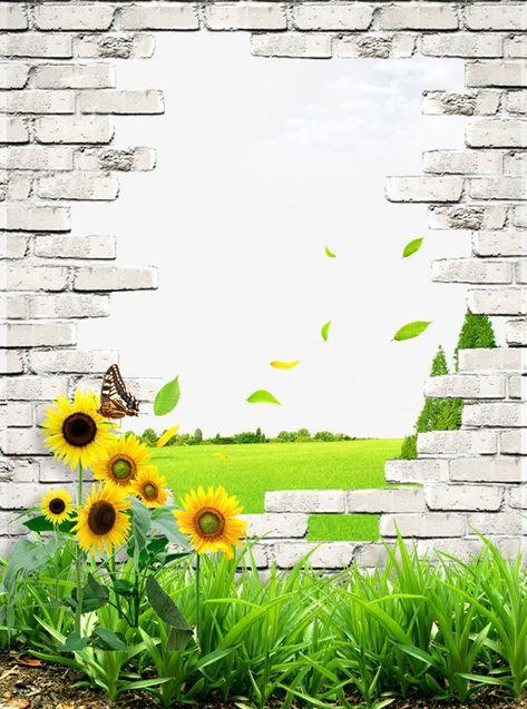 جديد الصور جميل عباد الشمس فراشة تطير الجدار جدار الحجر العشبية وال العشب الجدار من العشب Brick Wall Background Images Creative Posters