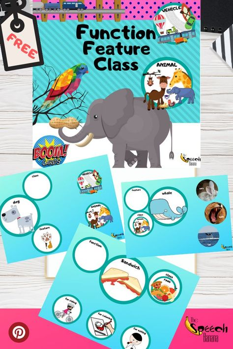 Function, Feature, Class (FFC) Digital Teaching Materials: BOOM Cards