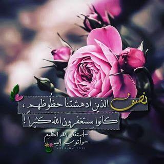 صور جميلة حلوه للفيس بوك 2020 Eid Greetings Rose Funny Dude