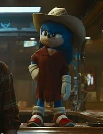 Pin By Jai On Media Movies Games Comics Books Tv Hedgehog Movie Sonic The Hedgehog Sonic The Movie