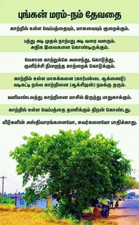 Windowsill Meaning In Tamil