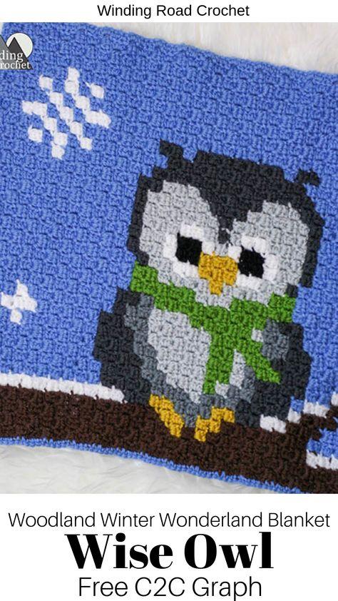 Tampa Bay Rays Fleece Blanket with crochet edge