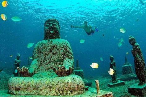 Menjangan Island: A Guide To Dive, Relax, And Snorkel At This Hidden Gem Of Northern Bali!