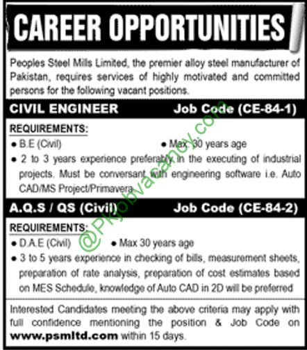 Dae  Engineering Peoples Steel Mills Limited Jobs January