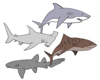 Shark Clip Art Shark Images Shark Drawing Art