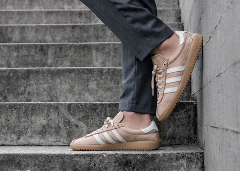 Pin on Sneakers: adidas Bermuda